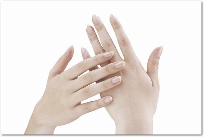 女性の美しい両手の様子
