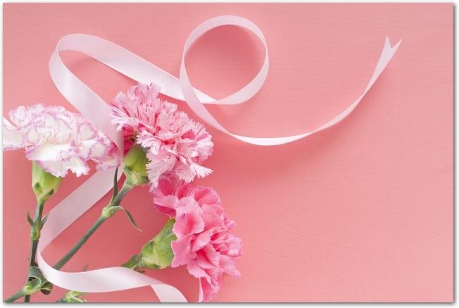 ピンク色のカーネーションとリボン