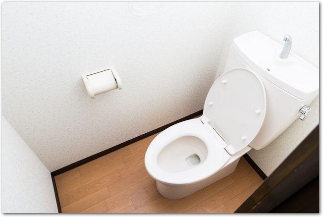 便座のふたが開いている家庭のトイレの様子